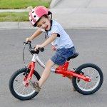 अपने बच्चे की उम्र के अनुसार साइकिल की खरीद करें ताकि यह साइकिल उनके लिए उपयुक्त हों और उनके विकास में मदद मिल सके। तथा आपके बच्चे जल्दी और तेजी से साइकिल चलाना सीख सकें। उनकी उम्र के आधार पर, विभिन्न खरीद विकल्पों पर विचार किया जाना चाहिए, जैसे आकार, वजन और आपकी ओर से साइकिल खरीदने के लिए, बजट। इस तरह के सभी बिंदुओं पर ध्यान केंद्रित करने के बाद, और अधिक विस्तृत रूप में, आप अपने बच्चे के लिए उपयुक्त साइकिल खरीद करने के लिए सबसे अच्छी जगह पर होंगे।इन्ही सभी बिंदुओं पर इस लेख में विश्तृत वर्णन किया गया है।