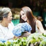 Top 10 món quà sinh nhật cho mẹ 60 tuổi vừa hay vừa ý nghĩa (năm 2020)