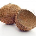 Pohon kelapa memang punya banyak manfaat. Dari mulai batang pohon, daun, hingga buahnya bisa dimanfaatkan untuk kehidupan manusia. Bahkan batok kelapa pun bisa diolah menjadi kerajinan tangan yang menarik, bernilai seni, dan punya nilai jual yang tinggi.