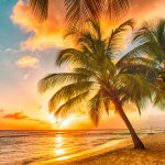 Pantai memiliki keindahan tersendiri. Paduan angin, lambaian nyiur, dan bunyi ombak merupakan pemandangan terindah yang memberikan kesejukan sekaligus ketenangan. Ingin tahu pantai apa saja yang terindah di dunia? Simak ulasannya berikut ini.