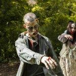 Film dengan tema zombie masih menjadi salah satu yang terfavorit hingga saat ini. Serangan mayat hidup yang tidak terkendali selalu menyuguhkan cerita yang seru. Inilah rekomendasi film zombie terbaik dari BP-Guide hanya untuk kamu.