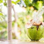 Dừa là một loại nông sản vô cùng đặc trưng của các nước Đông Nam Á. Đặc biệt là trái dừa ở vùng Bến Tre (Việt Nam) có chất lượng không hề thua kém bất cứ giống dừa nào khác trên thế giới. Vậy nên bằng tài năng và tâm huyết của mình dành cho trái dừa thân thương ở miền đất Bến Tre, Vietcoco đã quyết tâm đưa thương hiệu này trở thành một cái tên quen thuộc trên thị trường thế giới, giúp nâng tầm giá trị trái dừa Việt Nam. Mời bạn cùng Bp-guide khám phá câu chuyện thú vị đằng sau hành trình kinh doanh của Vietcoco trong bài viết dưới đây nhé!
