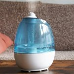 Is your skin getting dry easily even after applying moisturizer? It's time to check your air quality. Lack of proper humidity in your room atmosphere can even get you affected by flu and cough. This article discusses various natural humidifiers for homes.