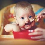 Anak bayi tentu sudah musti belajar makan sendiri. Selain melatih kemampuan motoriknya, juga menjadikan si kecil mandiri sejak dini. Ingin mencari peralatan makan bayi yang pas untuk si kecil? Simak ulasan BP-Guide berikut ini, yah.