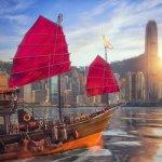 Sedang dalam perjalanan ke Hong Kong? Atau sedang merencanakan perjalanan ke sana? Hong Kong memang salah satu destinasi wisata populer di dunia. Tapi, jangan lupa bawa oleh-oleh khas Hong Kong, yah.
