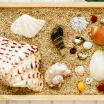 Kulit kerang memiliki bentuk dan motif yang bermacam-macam. Tak heran jika kulit kerang ini sangat bagus untuk dijadikan perhiasan. Jika dipadukan dengan material lain, maka perhiasan dari kerang ini juga semakin indah. Rekomendasi perhiasan kerang dalam artikel ini bisa kamu pertimbangkan untuk melengkapi penampilan.