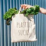 Ngaku Cinta Lingkungan? Yuk, Beralih ke 10 Rekomendasi Tas Belanja Berikut! (2020)