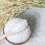 Sebagai masyarakat Indonesia, kita tidak bisa dijauhkan dari yang namanya nasi. Ini adalah bahan makanan pokok kita. Lauk apa pun akan terasa lebih nikmat jika nasinya enak. Nah, simak dulu tips memilih beras yang berkualitas namun harganya ramah di kantong. Cek juga rekomendasi beras murah dari kami!