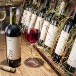 Minuman wine atau anggur adalah jenis minuman beralkohol hasil fermentasi yang populer dari Perancis. Minuman ini ternyata punya banyak ragam jenis dan manfaat yang bisa kamu ketahui. Mau tahu apa saja manfaat dan jenis minuman wine yang beredar di pasaran? Simak ulasan BP-Guide berikut ini!