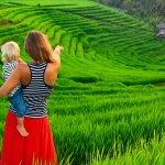 Ubud menjadi destinasi utama bagi mereka yang ingin rehat dari kesibukan dunia. Agar bisa maksimal, kamu harus tahu hotel-hotel mana saja di Ubud yang bisa memberi sensasi Bali yang sebenarnya.