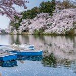 カップルの特別な記念日には、食や自然など魅力がいっぱいの新潟へ旅行しませんか。今回は、新潟で記念日に人気の温泉【2020年最新情報】をお届けします!新潟ならではの温泉や食を満喫できる温泉宿で、素敵な記念日の思い出を作りましょう。