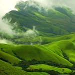 Would you like to wake up to the aroma of coffee in the air? Mist? Green Scenery everywhere? Even if you don't, you should visit Chikmagalur; a humble town that boasts of massive coffee plantations. We bring to you the most loved and favoured tourist destinations in Chikmagalur. Also available is a small quip on the shopping for souvenirs.