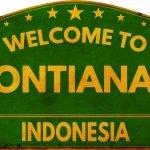 Tidak ada salahnya Anda merencanakan untuk liburan ke Pontianak, ibukota Provinsi Kalimantan Barat. Kota ini sudah menjadi salah satu kota besar di Indonesia yang memiliki banyak daya tarik. Tentunya, jangan lupa membawa oleh-oleh khas kota ini, yah.