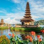 Oleh-oleh berupa makanan selalu dibeli orang saat berkunjung ke tempat wisata. Jika berkunjung ke Bali, Anda tak perlu bingung memilih oleh-oleh makanan karena di sana terdapat berbagai jenis makanan yang lezat rasanya. Silakan pilih oleh-oleh khas Bali berikut ini jika Anda berencana berkunjung ke sana.