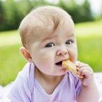 10 Rekomendasi Biskuit Bayi Terbaik untuk Tumbuh Kembang Si Kecil