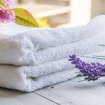 なぜ高級タオルが喜ばれるのでしょうか?高級タオルが喜ばれる理由や選び方についてや、人気のある高級タオルを2017年 最新版ランキング形式で紹介いたします。