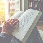Membaca novel membawa pembaca ke dalam dunia baru yang belum pernah ada sebelumnya. Termasuk untuk kisah non fiksi. Temukan inspirasi dalam deretan novel nonfiksi terbaik, melalui artikel yang direkomendasikan oleh BP-Guide berikut ini.