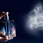 Parfum telah menjadi pelengkap penampilan bagi pria agar selalu percaya diri. Pria juga cenderung bertahan dengan satu parfum yang dijadikan sebagai aroma khasnya. Maka dari itu, ketika parfum dalam botol telah habis, para pria memilih untuk membeli parfum refill dengan aroma yang sama. Berikut adalah 10 rekomendasi parfum refill terfavorit bagi para pria.