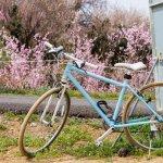 Punya Hobi Sepeda? Cek Dulu 6 Sepeda Jepang Populer yang Berkualitas dan Tak Ketinggalan Zaman (2020)