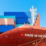 Jangan Sampai Ketinggalan, Ya! Ini 10 Rekomendasi Oleh-Oleh Vietnam yang Wajib Kamu Bawa Pulang