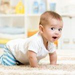Bayi mengalami fase merangkak dalam hidupnya. Bayi yang baru bisa merangkak tentu perlu celana yang pas dan tepat. Berikut ini, BP-Guide akan memberikan tips memilih celana untuk bayi yang baru mulai merangkak dan rekomendasi produk. Simak, yah.