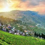 Darjeeling in West Bengal is one of those that everyone must visit at least once. The charming hill station has something to offer every kind of traveler, and is as suitable for families as it is for the solo traveler. It includes pretty scenic places, a zoo, monasteries, places to eat, and beautiful view points. Read on to find out more!