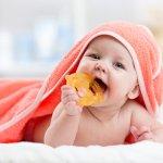 Gigitan bayi atau teether menjadi salah satu benda yang penting bagi bayi. Sebab, dengan gigitan bayi, maka proses pertumbuhan gigi bayi menjadi lebih cepat dan lebih baik. Ingin mencari gigitan bayi yang pas untuk anak Anda? Simak ulasan berikut, yah.