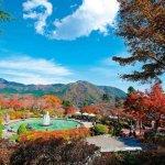 大切な彼氏・彼女の誕生日には、歴史と伝統がある神奈川の温泉宿を選びませんか?今回は、神奈川にある誕生日に人気の温泉宿「2018年最新情報」をご紹介します。数々ある温泉宿のなかから、カップルにおすすめの温泉宿を厳選しましたので、ぜひ誕生日旅行の計画に役立ててくださいね。