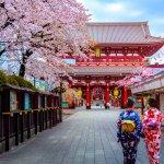 Sedang berniat untuk melancong ke Jepang? Nah, ada beberapa hal yang musti kamu ketahui juga datangi ketika mengunjungi negeri matahari terbit ini. Apa saja yah keunikan Jepang yang tidak dimiliki negara lainnya? Simak ulasan BP-Guide berikut ini.
