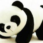 Siapa yang tidak tahu panda? Hewan berbadan bulat menggemaskan yang punya ciri khas warna hitam dan putih ini memiliki penggemar nyaris di seluruh dunia. Kerentanan eksistensinya mendorong pemerintah Tiongkok untuk membantu panda dalam berkembang biak. Kelucuan panda juga menjadikan banyak orang ingin mengoleksi berbagai benda dalam bentuk hewan ini seperti dalam referensi berikut.