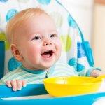 Bayi Anda memasuki usia 6 bulan? Wah, tandanya sudah harus diberi MPASI, ya. Anda bisa andalkan kursi makan bayi untuk membantu saat menyuapi si kecil. Intip rekomendasi dari BP-Guide ya.