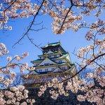 Wisata di Jepang sangatlah beragam. Biasanya para turis akan menuju Tokyo terlebih dulu, namun sebaiknya kamu pertimbangkan juga destinasi wisata yang sama menawannya di Jepang, yaitu wisata Osaka. Baik bagi penggila belanja, wahana menarik, sampai pecinta belanja, Osaka tidak akan mengecewakan!