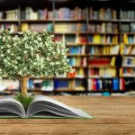 Trying to Get Your Head Around How Stocks Work? 10 Best Books on the Stock Market by Experts That Will Make You a Whiz on Financial Concepts and Investing (2021)