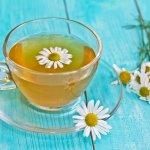 Minuman untuk relaksasi memang banyak jenisnya. Kamu yang sedang mencari minuman relaksasi bisa lirik teh chamomile. Teh yang satu ini unik dengan aroma segar bunga chamomile dan rasa yang ringan. Manfaatnya juga sangat banyak, loh. Yuk, aneka manfaat teh yang satu ini dan juga rekomendasinya dari kami!