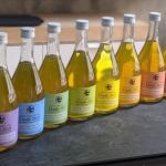 希少な茶葉を使用した極上のボトルティー「CRAFT BREW TEA Etude 2021」の開発秘話を取材|丸七製茶株式会社
