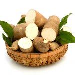 Singkong Bisa Diolah jadi Aneka Makanan Lezat, Lho, Inilah 13 Rekomendasi Resep Makanan dari Singkong dan Tips Memilih Singkong yang Baik