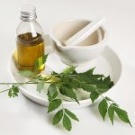 5 Best Neem Oil That Will Improve Your Skin with Regular Use Plus What Neem Oil Has to Offer for Our Healthy Skin in 2020