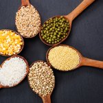 With so many millet types available, it can get difficult to decide which one to go with to use in your next recipe. Fret not, as we bring you all the types of millets available in India, along with their details so that you can make an informed decision!