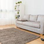 Karpet adalah elemen dekorasi di rumah yang tidak bisa dilewatkan untuk dimiliki. Simak cara memilih karpet yang benar untuk di rumah. Cek juga rekomendasi karpet terbaik dari kami!