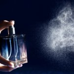 Parfum musk yang menjadi favorit banyak orang juga menjadi favorit produsen parfum. Tak sedikit produsen yang menggunakan wangi musk sebagai salah satu parfumnya. Parfum musk apa yang paling direkomendasikan oleh BP-Guide? Simak ulasannya.