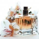 Parfum dan wanita adalah dua hal yang tak bisa dipisahkan. Jika kamu sedang mencari parfum baru, BP-Guide punya rekomendasinya. Parfum-parfum ini memiliki aroma yang enak dan cocok untuk wanita.