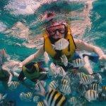 Snorkeling memang sangat menyenangkan. Aktivitas ini akan lebih seru jika kamu melakukannya bersama saudara dan teman. Kamu bisa pilih Bali sebagai tujuan snorkeling-mu! Cek lokasinya yuk!