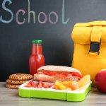 Praktis Bawa Bekal ke Sekolah dengan 10 Rekomendasi Tas Bekal Murah dan Ramah Lingkungan (2020)