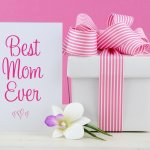 Saat ibu berulang tahun, kamu tentu ingin memberikan kado istimewa untuknya. Memberikan kado sesuai dengan kebutuhan dan kegemaran ibu pasti akan memberikan kebahagiaan tersendiri. Simak beberapa rekomendasi kado untuk ibu di bawah ini.