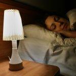 Lampu tidur menjadi salah satu kebutuhan utama di dalam kamar. Kamu wajib tahu apa saja fungsi dari lampu tidur supaya tahu betapa pentingnya produk yang satu ini untuk dimiliki. Cek juga cara memilih lampu tidur yang bagus. Selain itu, jangan lupa untuk mengintip rekomendasi dari kami, ya!