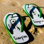Sandal ukir menjadi sebuah terobosan terbaru, di mana sandal jepit yang sering ditemukan di warung atau toko terdekat, diukir sedemikian rupa. Harganya tentunya menjadi berbeda, meski masih begitu terjangkau. Nah, ingin tampil beda dengan sandal ukir? Simak rekomendasi BP-Guide berikut ini, yah.