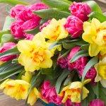 退職祝いや、結婚祝いなどの記念すべき瞬間に、贈り主の想いのこもった特別な花束を届けませんか?この記事では2018年最新情報として、予算3000円で贈れる花束を厳選してご紹介します。フラワースミス・レイリやTHE ROSE SHOPなどこだわりのショップの花束から、Anne's Flowerのインパクトあるひまわりの花束まで、幅広くまとめました。