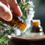 Salah satu cara merawat bayi agar tetap nyaman adalah dengan memberikan essential oil. Essential oil terbuat dari bahan-bahan alami sehingga aman untuk kulit bayi. Simak 10 rekomendasi essential oil yang aman untuk bayi.