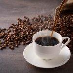 Percaya atau tidak Indonesia merupakan salah satu negara penghasil kopi terbaik di dunia. Nyatanya tak hanya kopi luwak dan arabika yang terkenal, tapi ada banyak ragam kopi yang juga wajib kamu ketahui. Berikut 10 jenis kopi terbaik di dunia yang tak boleh terlewatkan begitu saja oleh pecinta kopi.