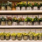 Tanaman Lebih Rapi dan Terawat dengan 10 Rekomendasi Rak Bunga Minimalis Rekomendasi BP-Guide (2020)